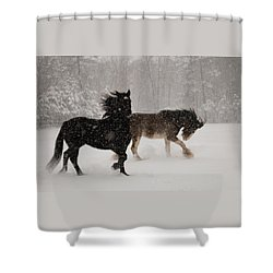 Frolic In The Snow Shower Curtain