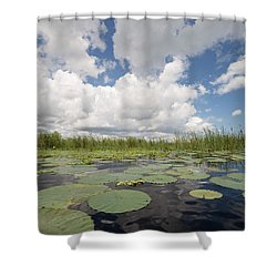 From A Frog's Point Of View - Lake Okeechobee Shower Curtain by Christopher L Thomley