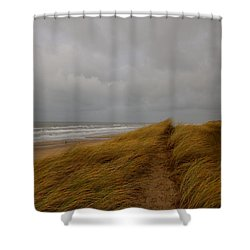 From Dunes To Sea Shower Curtain