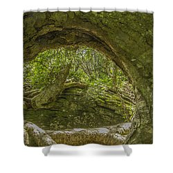 From One Tree To Another Shower Curtain