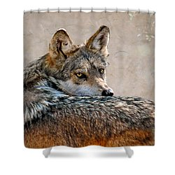 From Out Of The Mist Shower Curtain by Elaine Malott