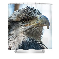 From The Bird's Eye Shower Curtain