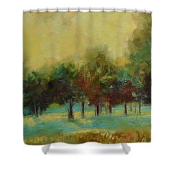 From The Other Side II Shower Curtain by Ginger Concepcion