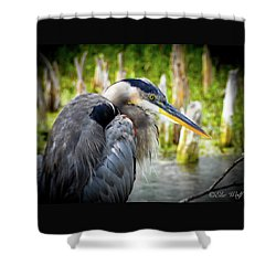 From The Series Great Blue Number 2 Shower Curtain