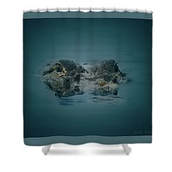From The Series I Am Gator Number 6 Shower Curtain