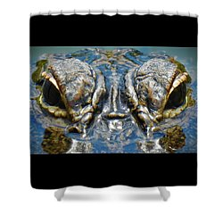 From The Series I Am Gator Number 7 Shower Curtain
