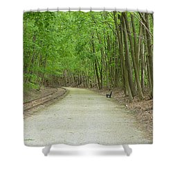 Shower Curtain featuring the photograph From The Summit by Donald C Morgan