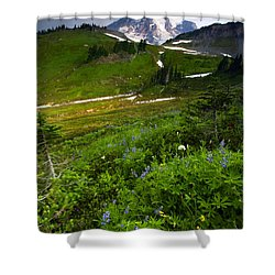 From The Top Shower Curtain by Mike  Dawson
