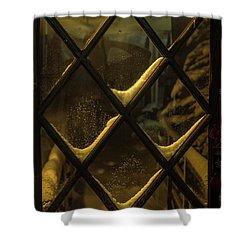 Front Door Shower Curtain