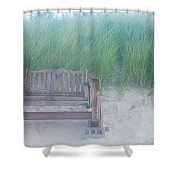 Shower Curtain featuring the photograph Front Row Dune Swing Chicks Beach by Suzanne Powers