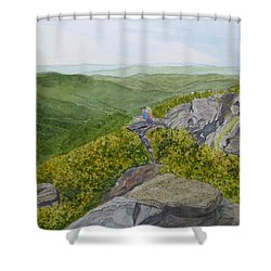 Front Row Seats Shower Curtain