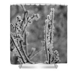 Frost 1 Shower Curtain