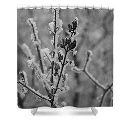 Frost 5 Shower Curtain