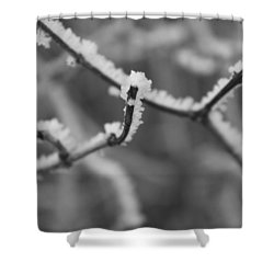 Frost 6 Shower Curtain by Antonio Romero