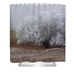 Frost And Fog Shower Curtain by Alana Thrower
