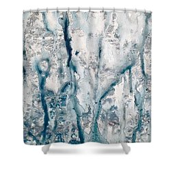 Frost And Rain On The Windows Shower Curtain