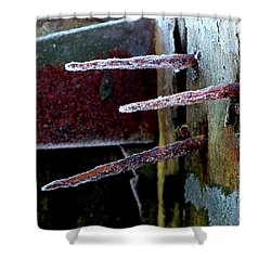 Frost And Rust Shower Curtain