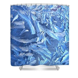 Shower Curtain featuring the photograph Frost Feathers by Marianne Dow