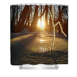 Frost On Sapling At Sunrise Shower Curtain
