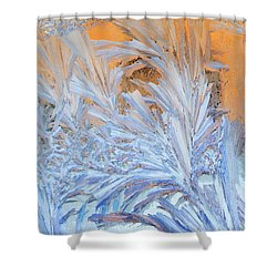 Frost Patterns On Window Shower Curtain