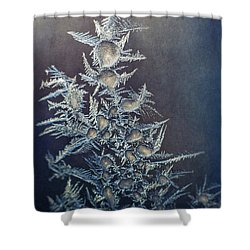 Frost Shower Curtain Scott Norris
