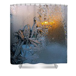 Frost Warning Shower Curtain by Pamela Clements