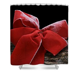 Shower Curtain featuring the photograph Frosted Bow by Nikolyn McDonald