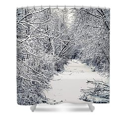 Shower Curtain featuring the photograph Frosted Feeder by Kendall McKernon