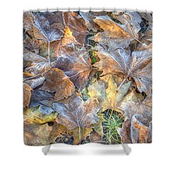 Frosted Leaves 8x10 Shower Curtain
