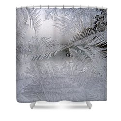 Frosted Pane Shower Curtain