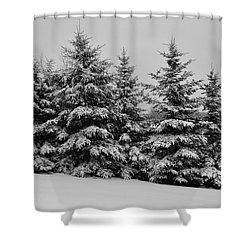 Shower Curtain featuring the photograph Frosted Trees by Kathleen Sartoris