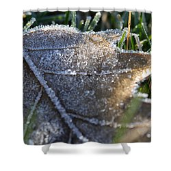 Frosty Autumn Shower Curtain by Nikki McInnes