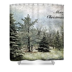 Frosty Christmas Card Shower Curtain by Lois Bryan