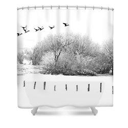 Frosty Flight Shower Curtain