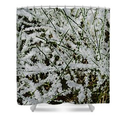 Frosty Grass Shower Curtain