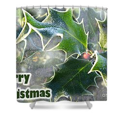 Shower Curtain featuring the photograph Frosty Holly by LemonArt Photography