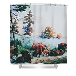 Frosty Morning Shower Curtain by Hanne Lore Koehler