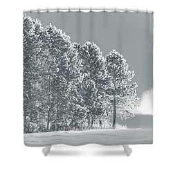 Shower Curtain featuring the photograph Frosty Morning by WB Johnston