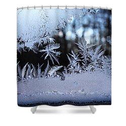 Frosty Morning Window Shower Curtain by Liz Allyn