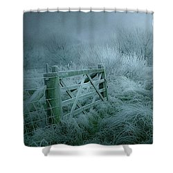 Frosty Night Shower Curtain