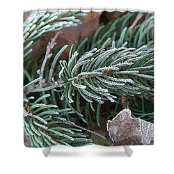 Frosty Pine Branch Shower Curtain