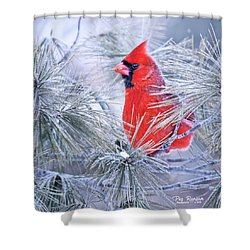 Frosty Seat Shower Curtain