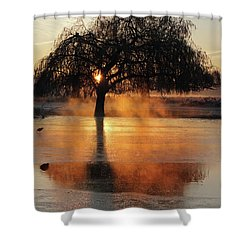 Frosty Sunrise In Bushy Park London 2 Shower Curtain