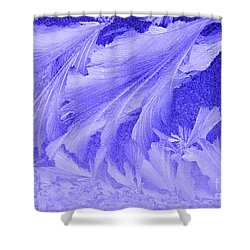 Frosty Window Shower Curtain