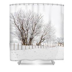 Frosty Winter Scene Shower Curtain