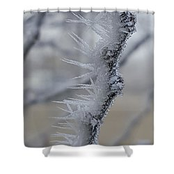 Frozen 2 Shower Curtain