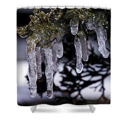 Frozen 4 Shower Curtain
