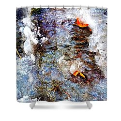 Shower Curtain featuring the pyrography Frozen Bank  by Jennah Lenae