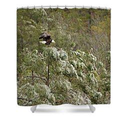Frozen Call Shower Curtain