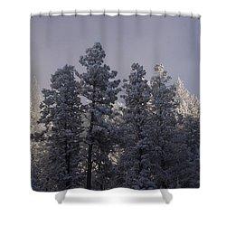 Shower Curtain featuring the photograph Frozen by Ellen Heaverlo